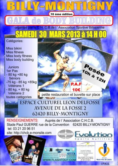 affiche-spectacle-gala-de-billy-montigny-2013-copie.jpg